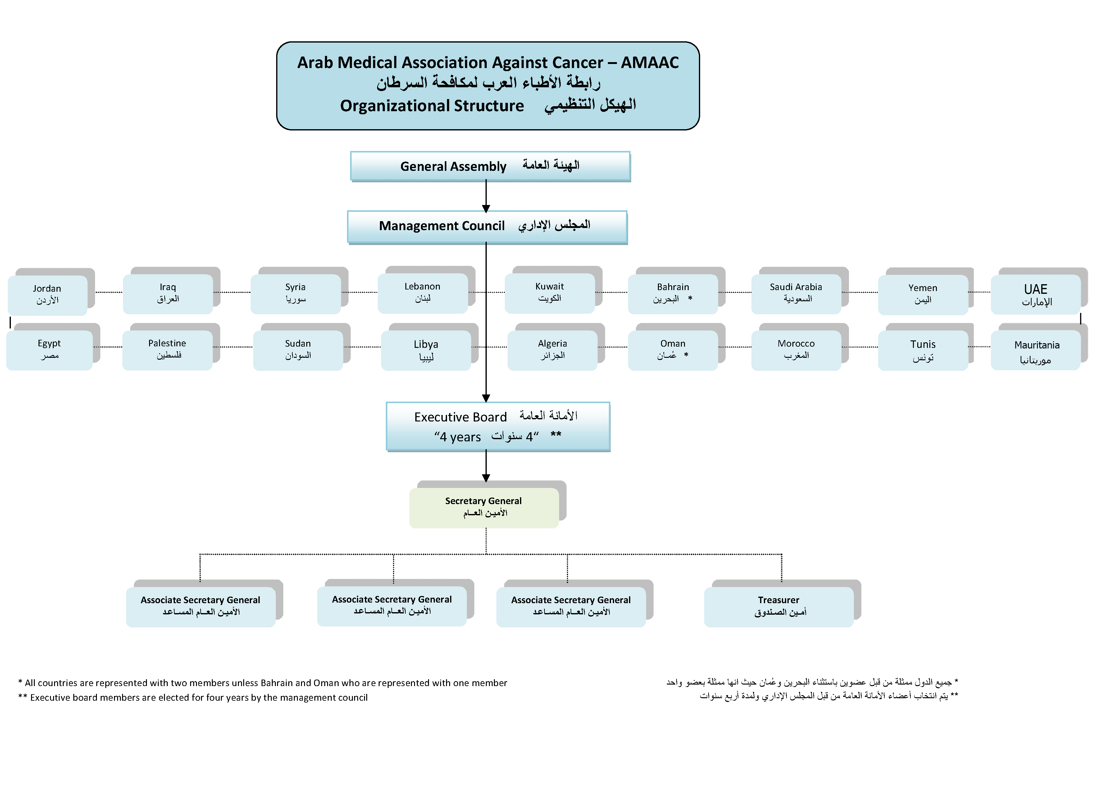 lidl organisational structure Furthermore, lidl should continue to open more stores in the uk in order to expand their presence and accessibility, which will allow their operations to have similar exposure to the other major supermarket retailers bibliography booms, b h & bitner, m j, 1981 marketing strategies and organization structures for service firms.